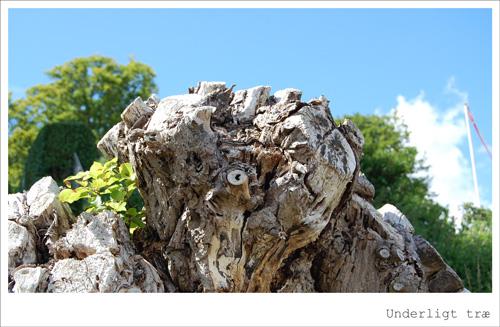 Underligt træ